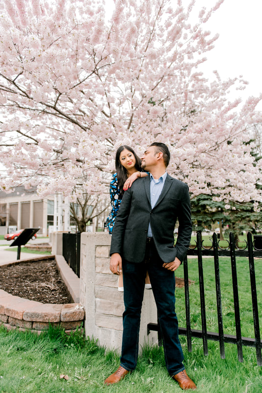cherry blossom engagement toronto
